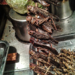 Fried locusts on a stick