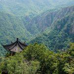 pagoda neighboring the walkway